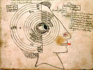 Diagram of the seven tunics and three humours of the eye, with parts of the head.